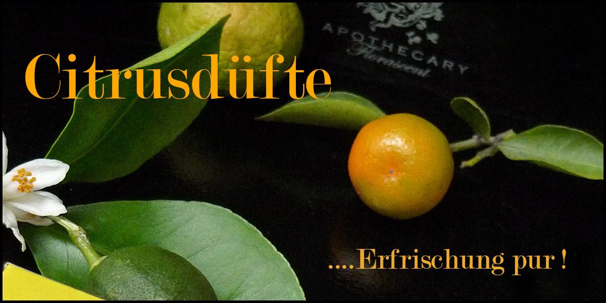 Citrusdüfte